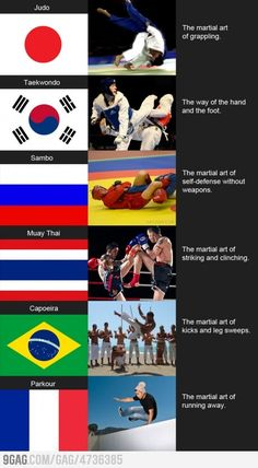 Martial arts around the world. Oh yeah running away would be for America also... That or shooting someone.