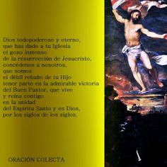 Capturador de Imágenes: CUARTO DOMINGO DEL TIEMPO PASCUAL , DOMINGO 11 DE MAYO