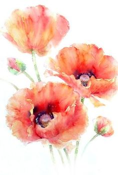 On The Net Landscape Design And Style - The New On-line Tool That Designers Are Flocking To For Landscape Designs Rose Eddington - Watercolor Artist Contact Watercolor Painting Techniques, Watercolor Artists, Watercolor Paintings, Watercolors, Watercolor Portraits, Painting Tutorials, Abstract Paintings, Watercolor Poppies, Watercolor Print