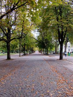 Parc des Bastions Sidewalk, Park, Side Walkway, Sidewalks, Pavement, Walkways