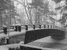 Mine Falls Park Bridge