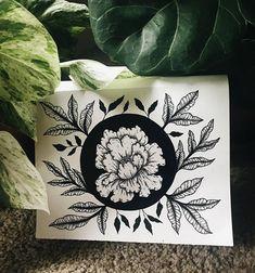 PLN21.23+ Peony Vignette  Botanical Style Illustration
