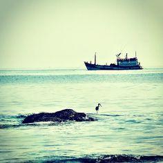 """""""ต่างคนต่าง..ทำ มา หา ปลา""""  Fisherman...Friend...."""