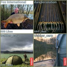 Here are Today's top Carp Fishing, Did your photo make the list? Brought to you by Oncarp.com. Use the #oncarp hashtag to try and make the top. #carpfishing #fishing #angling #carp #carplife #carpangler #carpangling #carpwatch #carpyshots #carping #carpology #bigcarp #totalcarp