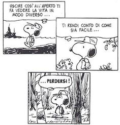 Lost Snoopy