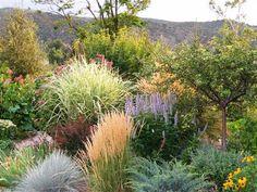 Artful Gardens  - low water garden Dry Garden, Water Garden, Gallery, Art, Gardens, Plants, Art Background, Roof Rack, Kunst