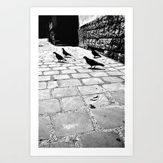Pigeon, Sidewalk, Art Prints, Contemporary, Home Decor, Art Impressions, Decoration Home, Room Decor, Side Walkway