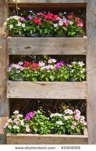 flower shelf