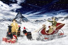 Shops, Photoshop, Zermatt, Mount Everest, Mountains, Travel, Candid Photography, Summer, Tents