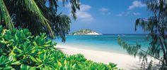 Lizard Island Nature | Great Barrier Reef Resort | Flora and Fauna