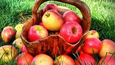 Dieta cu mere: slabesti 4 kg in 5 zile