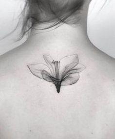 X-ray flower by Jakub Nowicz