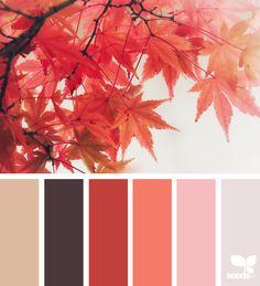{ autumn glow } | image via: @marjamatkalla
