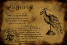 augurey harry potter - Google Search
