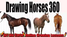 Trendy how to draw a horse rearing step by step 32 Ideas Horse Drawings, Animal Drawings, Drawing Animals, Drawing Lessons, Drawing Techniques, Drawing Things, African Big Cats, Horse Rearing, Horses