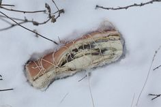 With Fäviken's grounds covered in snow for six months out of the year, NILSSON'S ARCTIC CUISINE: Relies on pickling, fermenting, curing and other old-fashioned preservation techniques through winter.