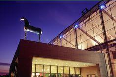 Musée d'art moderne et contemporain de Strasbourg : Alsace en hiver : que voir ? Que faire ? - Linternaute