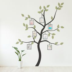 Awesome wall decal site. This one is so clever!    Display your family photos in a more creative way with this lovely tree wall decal!