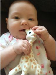 Do you have a little drooling, chewing machine?  Here are some tips to get you through the teething stage.