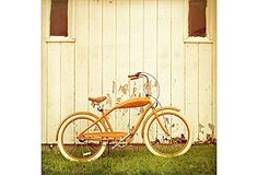 vintage orange bike.  i love you.
