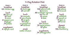4-day rotation diet benefits