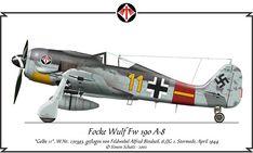 Focke-Wulf Fw190. The most beautiful plane ever designed. Designed by Kurt Tank