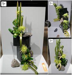 #Karton #grün #hoch #Büro #K WAFA, World Flower Show, World Association Flower Arrangers, Boston Flower Show