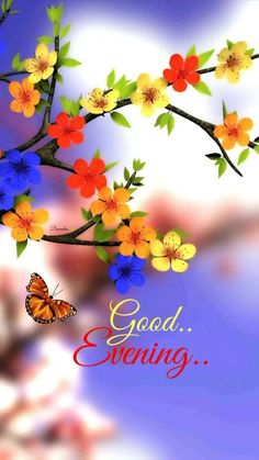 Morning Wishes Positive Good Morning Quotes In Tamil Good Evening Love, Good Evening Photos, Good Evening Messages, Good Evening Wishes, Good Evening Greetings, Evening Pictures, Good Morning Beautiful Pictures, Good Morning Images Flowers, Good Morning Picture