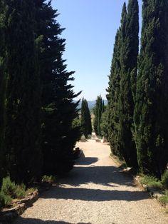 Fattoria La Vialla entrance of main house