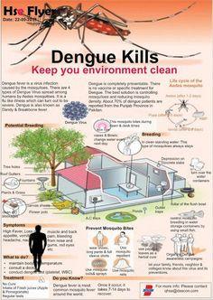 Infografía convencional, bastante información, diagramación un poco enredada. Ilustración convencional de la casa y los elementos diferente a la ilustración algo menos sencilla del mosquito. Uso tipográfico rígido.
