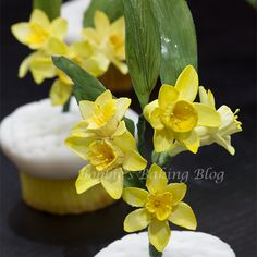 Sydney and Bobbie created elegant daffodil cupcakes for a wedding, and want to teach you how the daffodils were created.