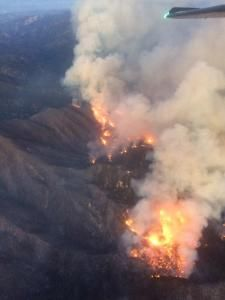 363 Best Hot Shot Crews and wildfires images