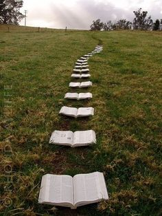 A trail of books. I think it would be a cool idea to line the aisle with bibles, all opened to verses about love & marriage.