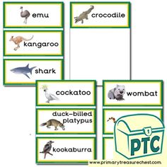 Australian Animal Themed Resources - Primary Treasure Chest Teaching Activities, Teaching Resources, Teaching Ideas, Duck Billed Platypus, Crafts For Kids, Arts And Crafts, Australian Animals, Role Play, Treasure Chest