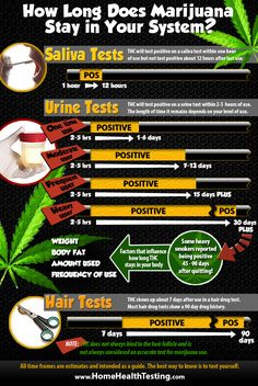 Need to know how long does marijuana stays in your system and may show positive on a  drug test.  This graphic gives you the information for saliva, u