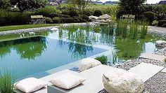 La piscina más natural...