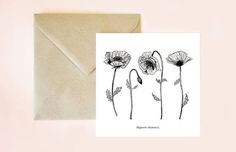 Tarjeta botánica, tarjeta floral, ilustración flores, dibujo plantas, dibujo botánico, tarjeta, postal, postal flores, postal con sobre