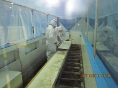 Certified Mold Remediation technicians performing mold removal services in a hockey arena inside of the Toronto area.