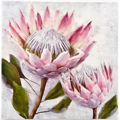 Pretty Protea Framed Painting on Canvas East Urban Home Art Floral, Flower Graphic, Graphic Art, Protea Art, Protea Flower, Flowers, Fleur Protea, Painting Frames, Painting Prints