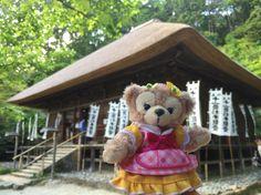 鎌倉杉本寺