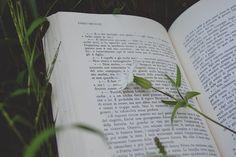 "booksandnerds: "" - by Giorgi Roberta on Flickr. """