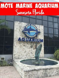 Our visit to Mote Marine Aquarium in Sarasota Florida. Manatees, Turtles, baby seahorses, baby jellyfish and more!