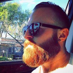 sunglasses beard