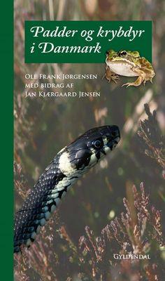 Padder og krybdyr i Danmark | Arnold Busck