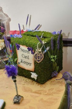 enchanted forest theme for 15 invitations - Google Search
