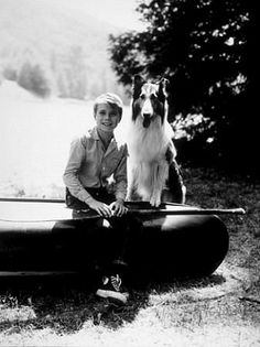 Lassie was another favorite show, i cried everyday that paw went up. Jon Provost, Saturday Morning Cartoons, Popular People, Tv Land, We Are Young, Collie Dog, Young Actors, Old Tv Shows, Back In The Day