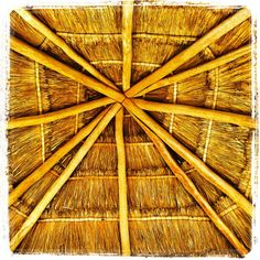 I spend my vacations in Tulum Quntana Roo, Mexico.  The best beach, ever.