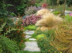 Use ornamental grasses in the garden for interesting color and texture and year-round interest in cold climates.  by Gardens by Gabriel  Morro Bay, CA