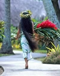 polynesie                                                                                                                                                                                 More