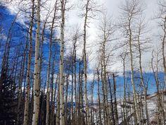 blue skies.... Vail Mountain, Mountain Style, Blue Skies, Sky, Mountains, Nature, Travel, Outdoor, Heaven